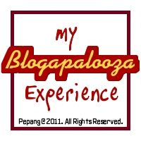 My Blogapalooza Experience